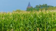 Passchendaele Church viewed across the fields